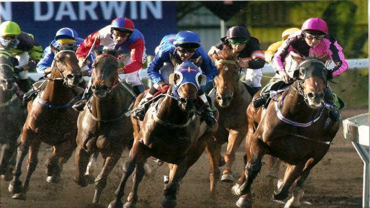 Onde apostar em corrida de cavalos